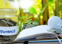 Insurance Comanies Money